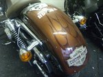 Harley by Impact signs Ossett