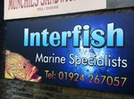 Interfish by Imact signs Ossett